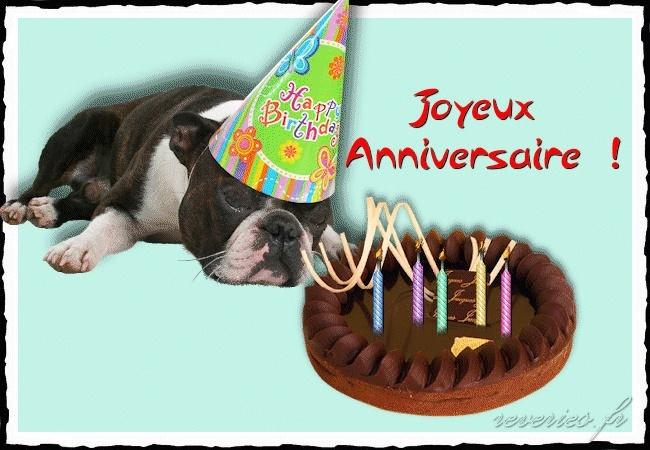 Joyeux anniversaire aux 2 pattes - Novembre 2012 - Page 2 Annive12