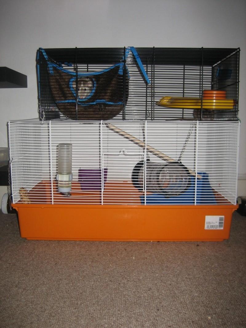 Vends trois cages sur paris! Img_0717