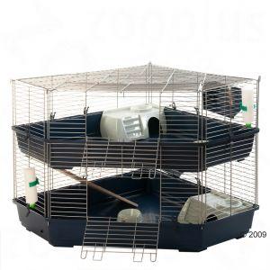 Choisir sa cage Cage_d11