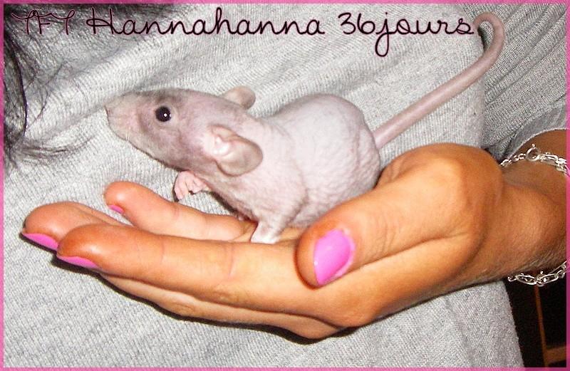 Les petites surprises de Giuliana - Page 15 Hannah23