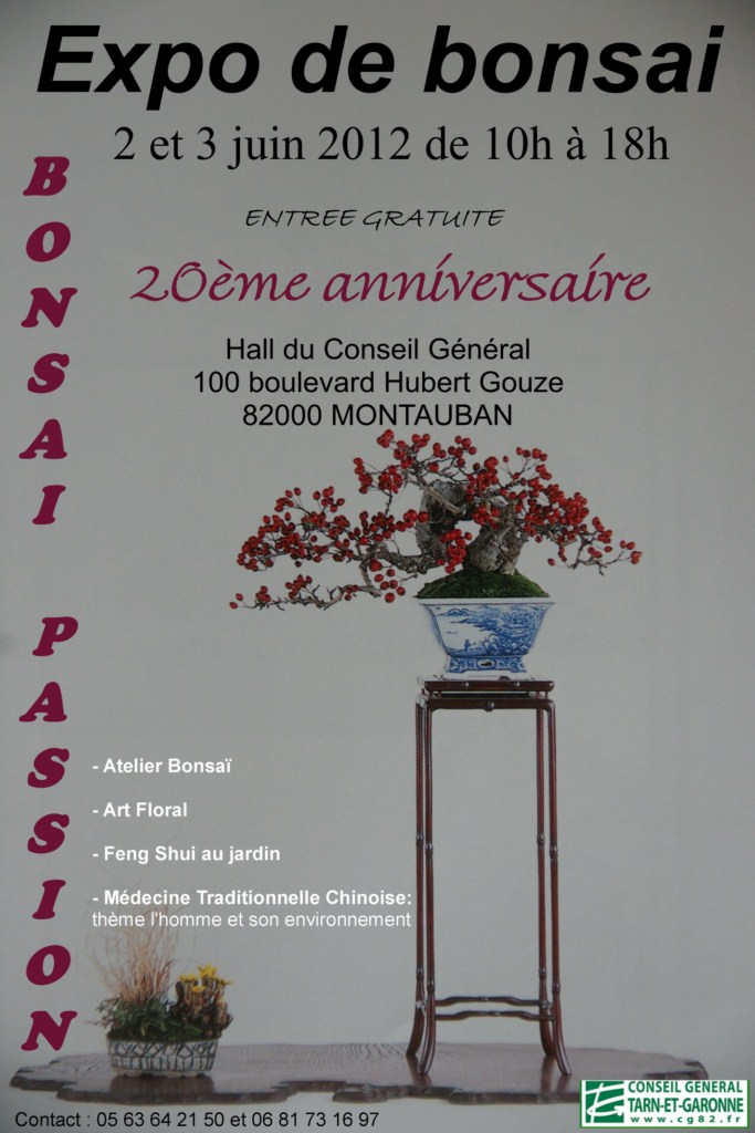 Expo à Montauban le 2 et 3 juin 2012 Affich11
