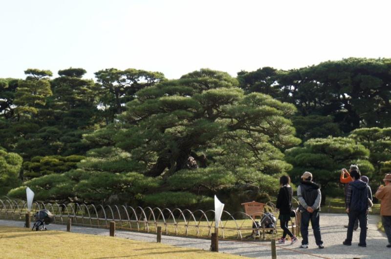 voyage au Japon 2011: parc Ritsurin  Dsc00420