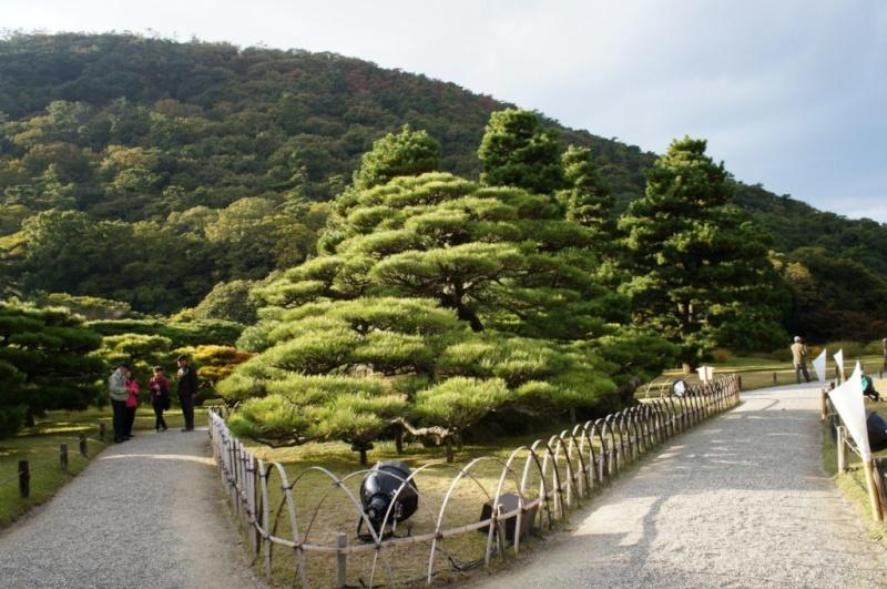 voyage au Japon 2011: parc Ritsurin  Dsc00425