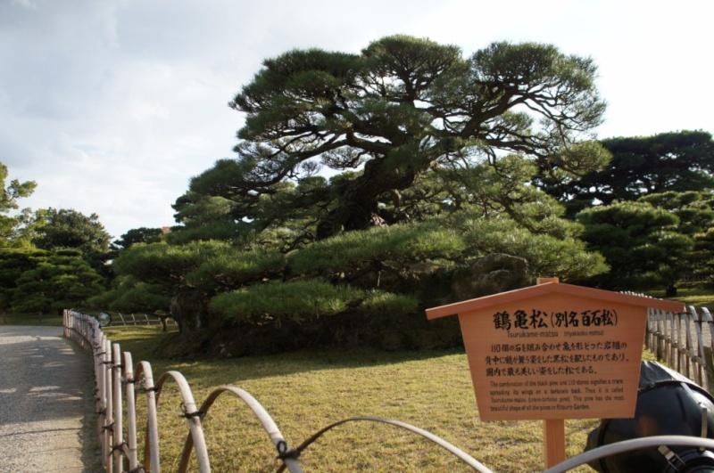 voyage au Japon 2011: parc Ritsurin  Dsc00426