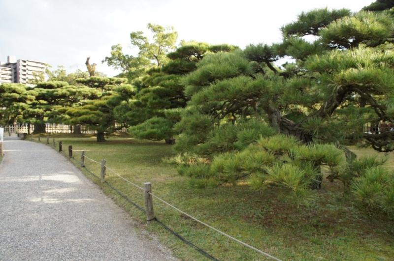 voyage au Japon 2011: parc Ritsurin  Dsc00427