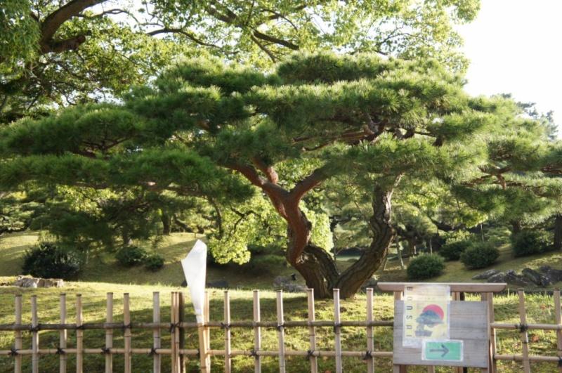 voyage au Japon 2011: parc Ritsurin  Dsc00428