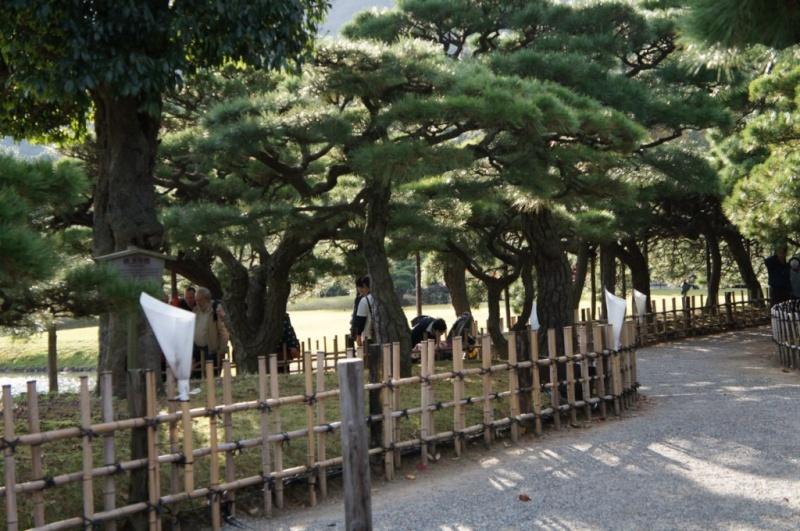 voyage au Japon 2011: parc Ritsurin  Dsc00429