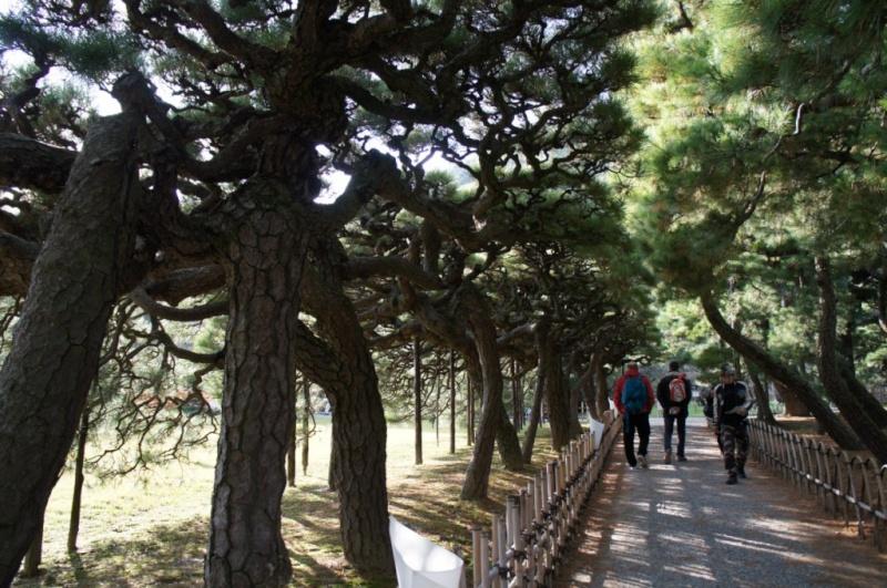 voyage au Japon 2011: parc Ritsurin  Dsc00430