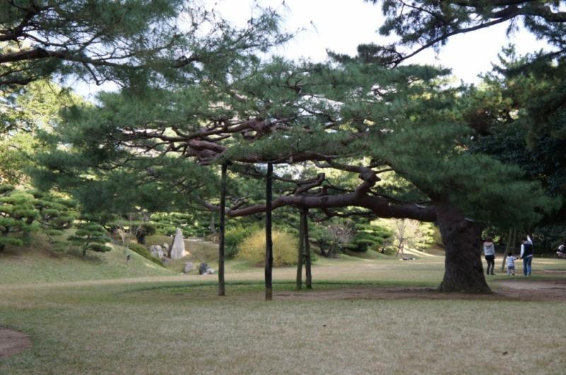 voyage au Japon 2011: parc Ritsurin  Dsc00437