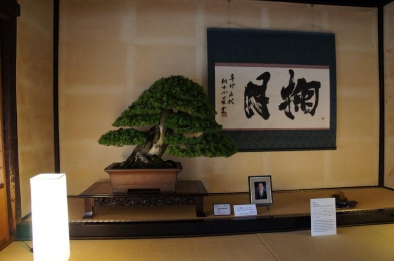 voyage au Japon 2011: parc Ritsurin  Dsc00461