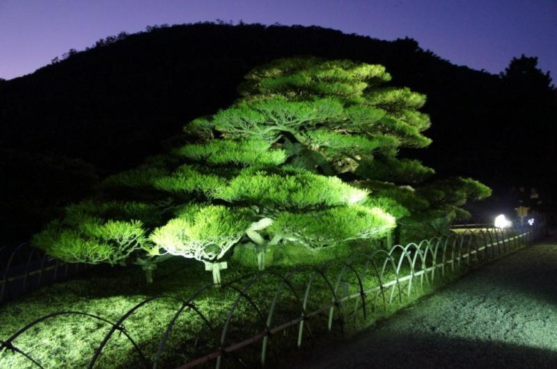 voyage au Japon 2011: parc Ritsurin  Dsc00518