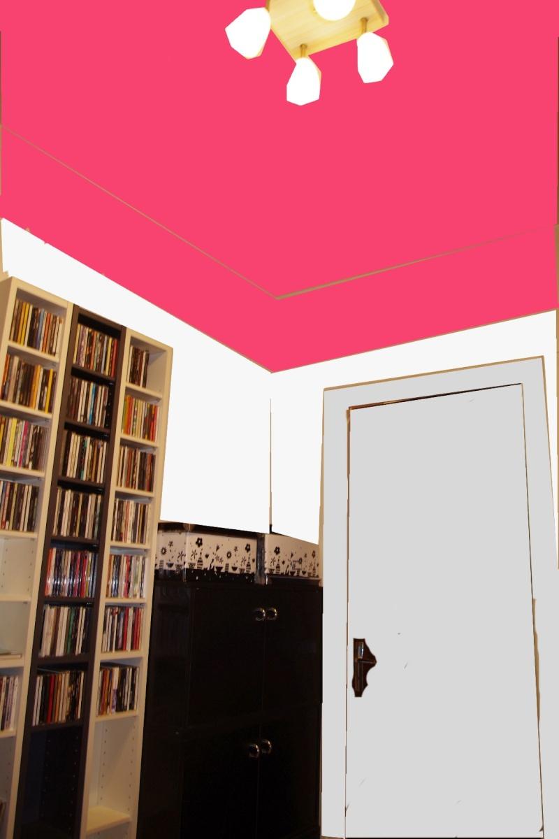 Dégagement vers chambre et garage à peindre - help CoUlEUrS ! Chbre_21
