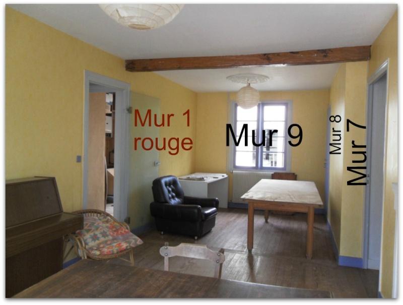 Maison en rénovation, à rafraîchir : Quelles couleurs pour notre séjour/salon/cuisine ouverte ? - Page 2 Sajour12
