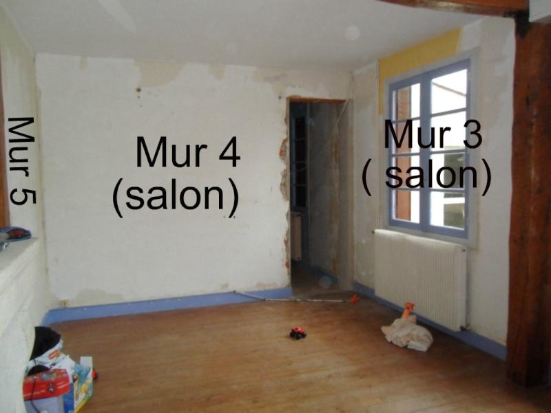 Maison en rénovation, à rafraîchir : Quelles couleurs pour notre séjour/salon/cuisine ouverte ? - Page 2 Sajour14