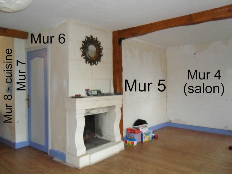 Maison en rénovation, à rafraîchir : Quelles couleurs pour notre séjour/salon/cuisine ouverte ? - Page 2 Sajour15