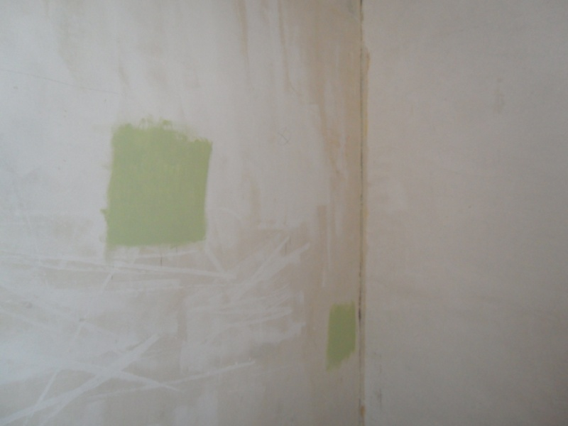 Maison en rénovation, à rafraîchir : Quelles couleurs pour notre séjour/salon/cuisine ouverte ? - Page 3 Sam_8412