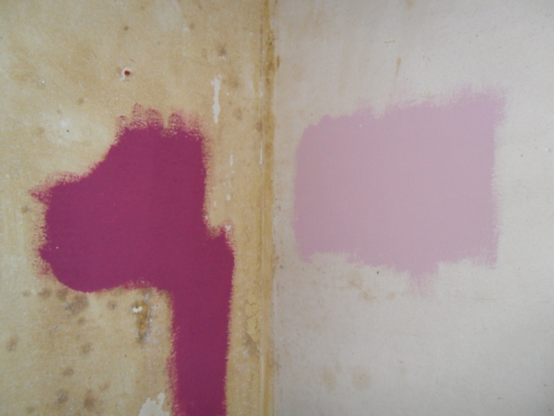 Maison à rafraîchir : La chambre de ma fille de 2 ans ? 2 murs peints, ça avance ! Page 4 - Page 2 Sam_8416