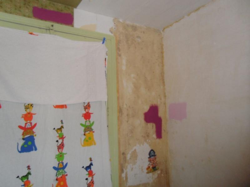 Maison à rafraîchir : La chambre de ma fille de 2 ans ? 2 murs peints, ça avance ! Page 4 - Page 2 Sam_8418