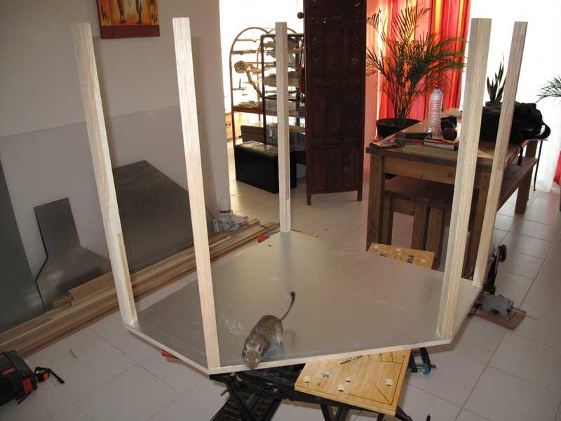 Projet d'une cage faite maison Img_5111