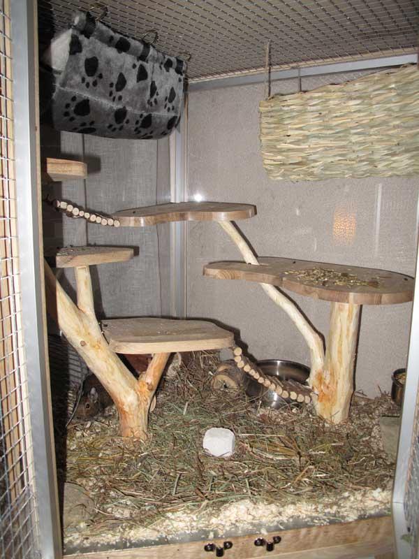 Projet d'une cage faite maison Img_5315