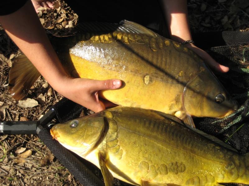 pêche Img_0710