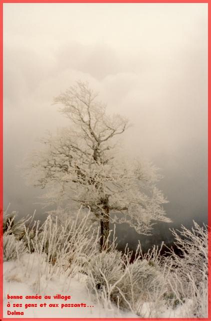 2012 : Vive l'an neuf ! Cantal14
