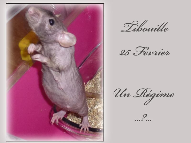 Tibouille & ses Bouillessss sss - Page 6 25_fev14