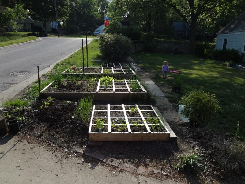 garden pics Boxes10