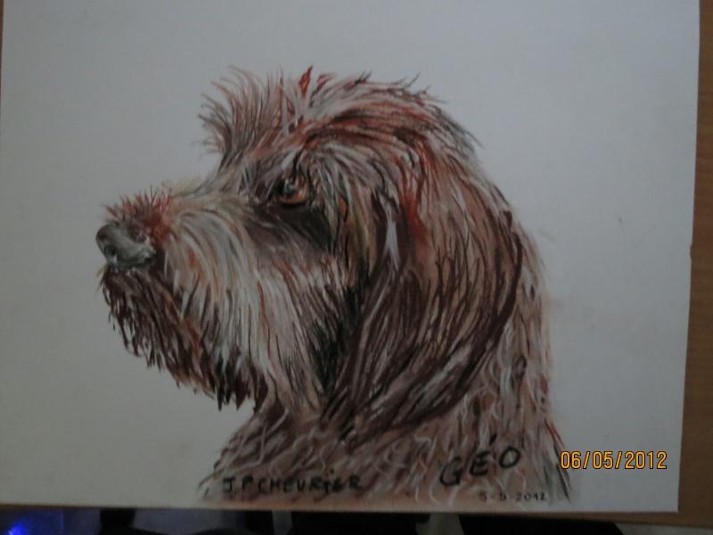 Quelques uns de mes dessins  et peintures - Page 4 Img_0326
