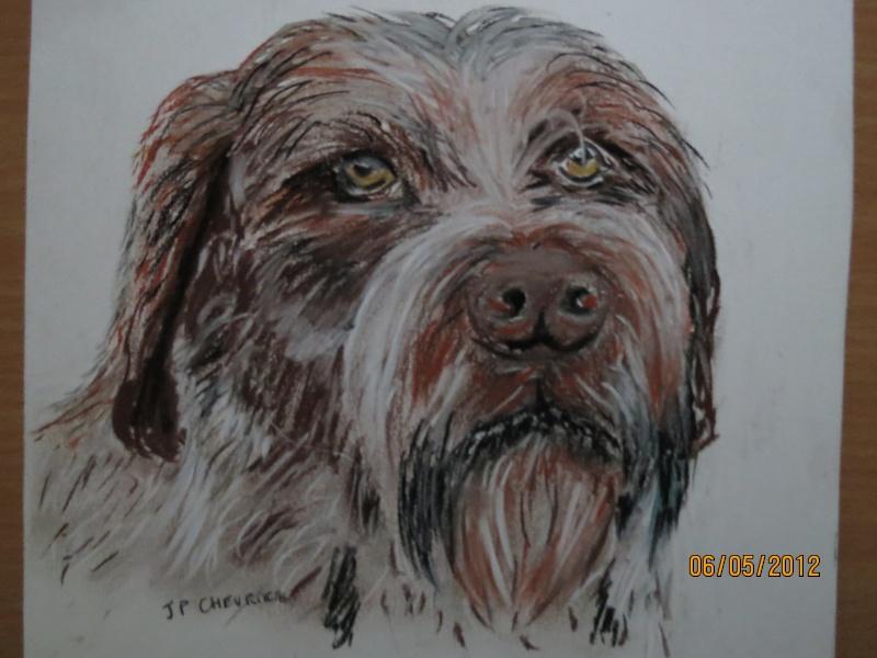 Quelques uns de mes dessins  et peintures - Page 4 Img_0327