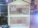 ma cage est elle assez grande? Cage14