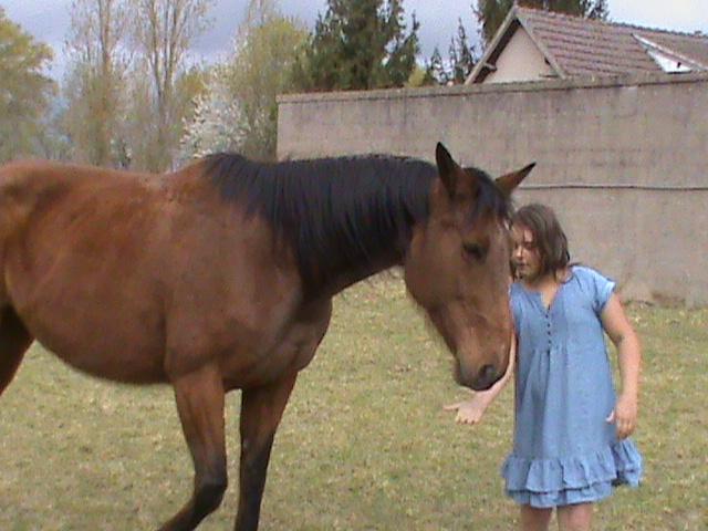 MARICA - SF née en 2001 - Adoptée en avril 2012 par Rafale Marika20