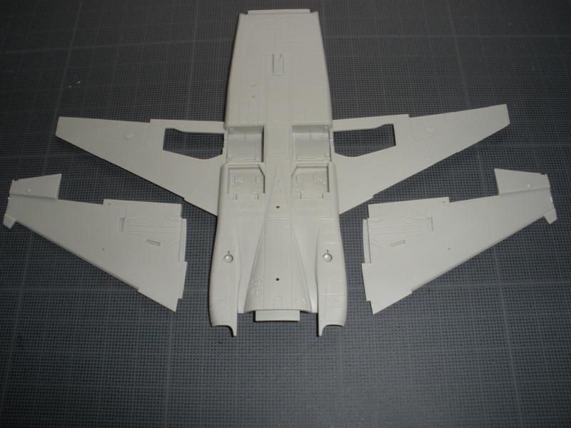 Montage F-5E Northrop AFV club-Ref AR 48102 - Mise à jour 11/02/2012 P2050117