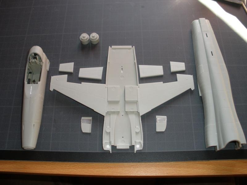 Montage F-5E Northrop AFV club-Ref AR 48102 - Mise à jour 11/02/2012 P2070110
