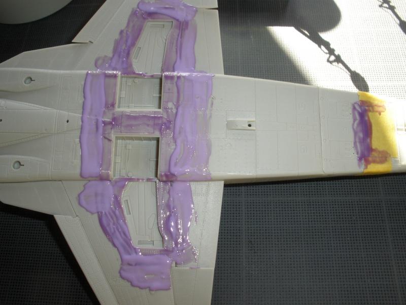 Montage F-5E Northrop AFV club-Ref AR 48102 - Mise à jour 11/02/2012 P2090116