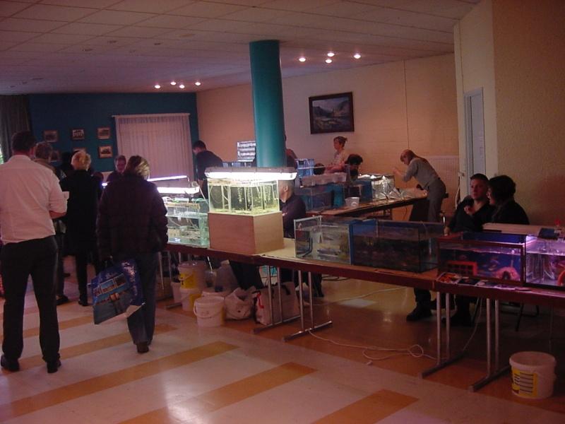 Bourse à Rémilly le 25 Novembre 2012 - Page 2 Dsc00183