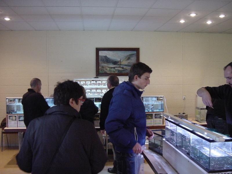 Bourse à Rémilly le 25 Novembre 2012 - Page 2 Dsc00186