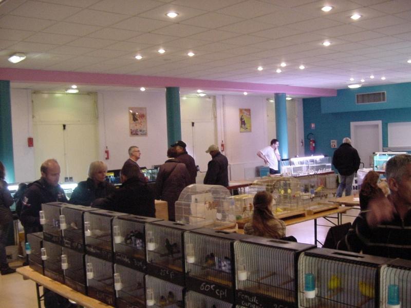 Bourse à Rémilly le 25 Novembre 2012 - Page 2 Dsc00192