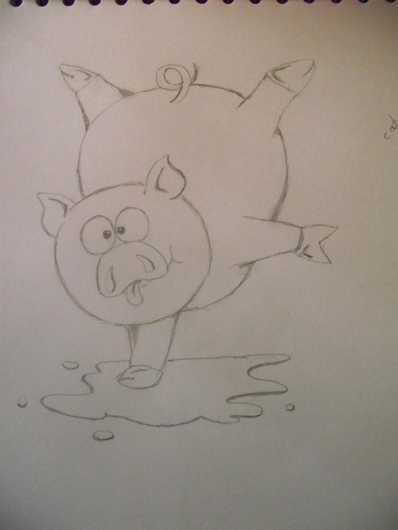 Mes dessins autre que Disney !  - Page 3 Dscf4213