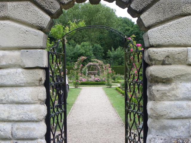 (60) Roseraie de l'Abbaye Royale de Chaalis Imgp3020