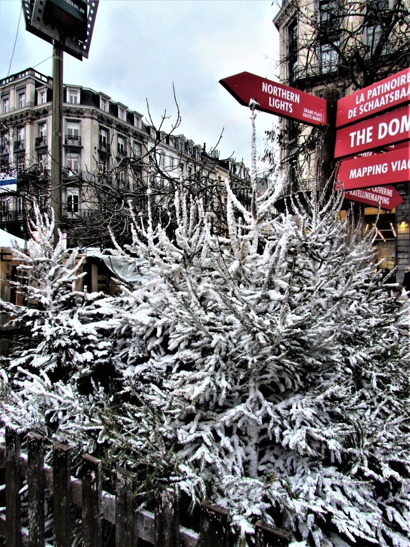Le marché de Noël à Bruxelles en Belgique. Img_3532