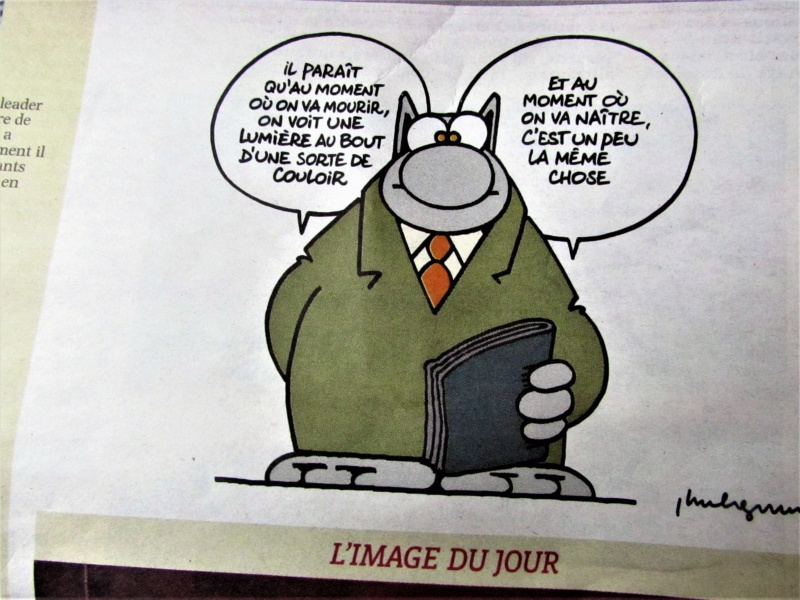 Une petite... - Page 28 Img_3810