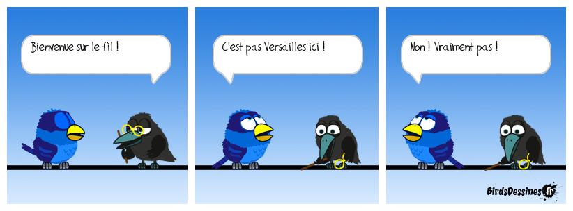 Les Birds - Page 15 Mister10
