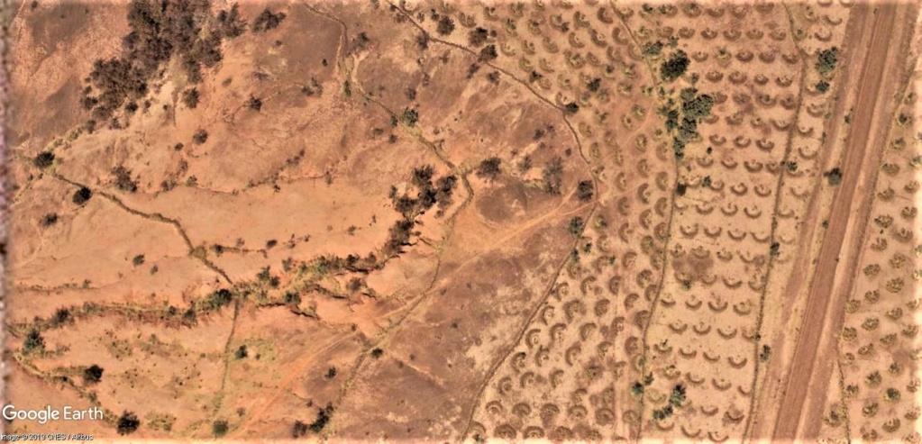 En Afrique avec le National Geographic Magazine - Page 13 Niger_10