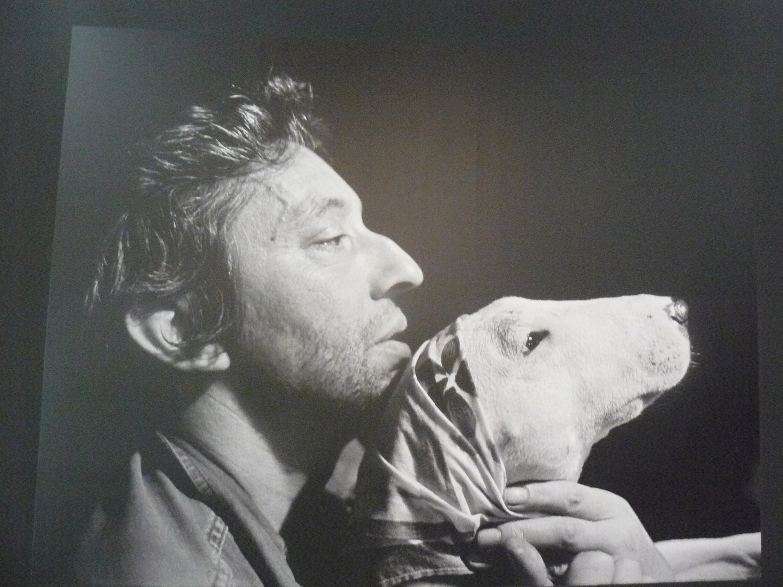 Serges Gainsbourg P1160217