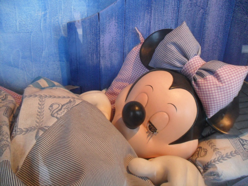 """Premier TR d'une """"Addicted-to-Disney"""" - Page 6 Sam_2365"""