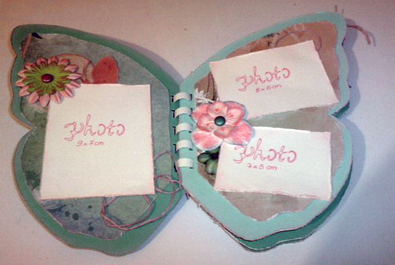 mini papillon P0304110