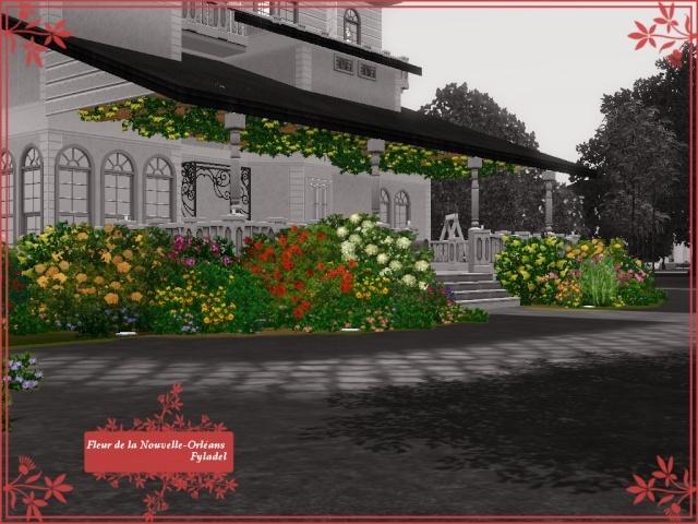 Galerie de Fyladel Fleur_10