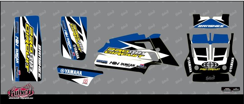 Kit deco duncan racing 350ban10