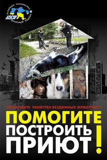 Приюты для бездомных животных в Украине: мифы и реальность